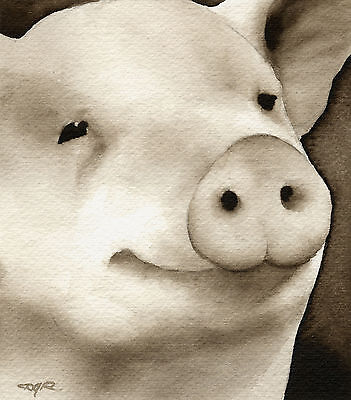 PIG Watercolor ART PRINT Signed by Artist DJR