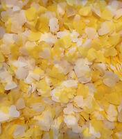 Giallo & Avorio Coriandoli Biodegradabili Up To 10 Coni A Scelta Forme Eco -  - ebay.it