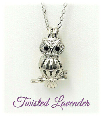 "Small Owl Locket Necklace with 18"" Chain"