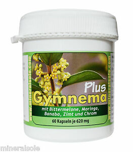 Gymnema-Plus-60-CAPSULE-PER-620-mg-per-besser-glykamischer-Index-GI