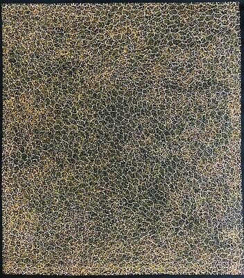 Gracie Morton Pwerle, Authentic Aboriginal Art.Size, 110cm x 100cm, Bush Plum