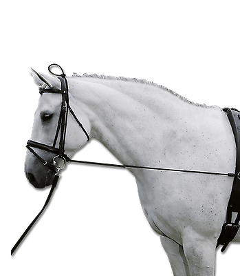Waldhausen Halsverlängerer Elastic Chambon Pony und Warmblut