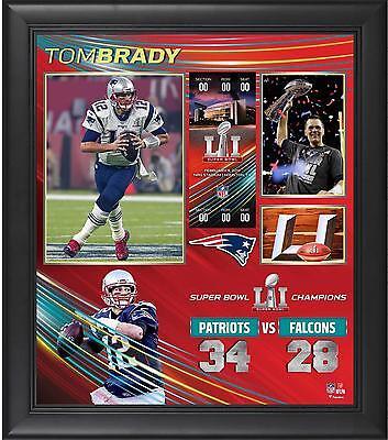 Tom Brady New England Patriots Framed 15x17 Super Bowl LI Champions Collage