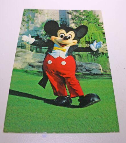 Vintage Walt Disney World Mickey Mouse Postcard  Ephemera Card Posted Disneyana