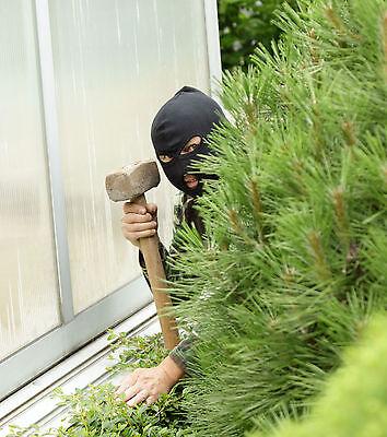Büsche und Hecken bieten Einbrechern den perfekten Sichtschutz. (© 123rf.de)