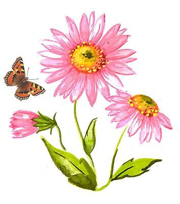 Pink Michaelmas Daisy Monarch Butterfly Select Size Waterslide Ceramic Decals Bx