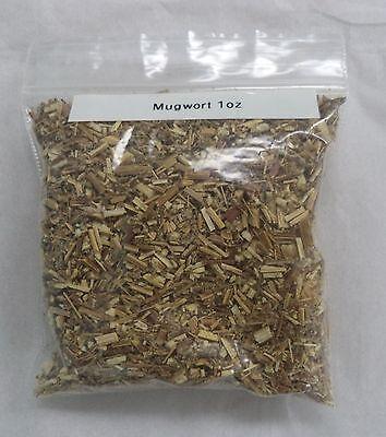 Organic Mugwort Herb : 1 oz Bag (Wicca) (Artemisia Vulgaris)
