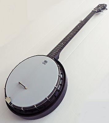 Vtg 1960's Banjo 5 String Bakelite Closed Back REMO Weather King Head Hard Case