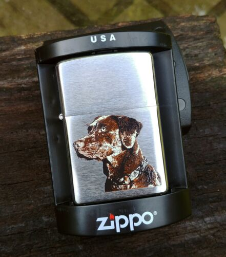 Chocolate Lab on Brushed Chrome Zippo Lighter Model # 21091