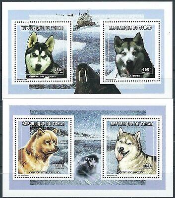 Tschad - Hunderassen der Polargebiete 2 KLB Paare postfrisch 1998 Mi. 1657-1660