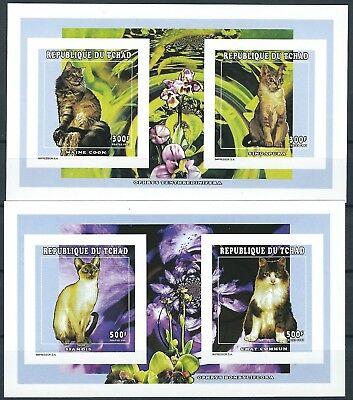 Tschad - Katzenrassen 2 x KLB Paare postfrisch 1998 Mi. 1652-1655 B