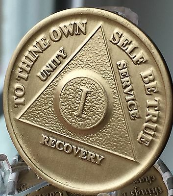 1 Year Alcoholics Anonymous AA Bronze Medallion Coin Sobriety Chip One