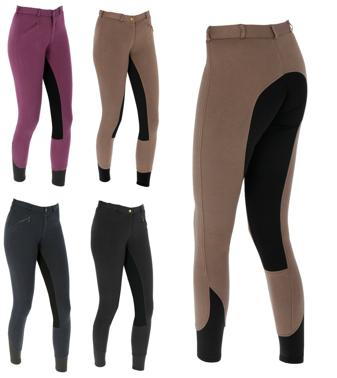 SportS Basic Reithose Damen Vollbesatz Baumwolle-Elasthan ReitsportPlus Economic