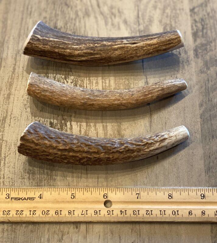 MEDIUM  Elk/Deer **NATURAL SHED** Antler Premium Dog Chew (1 Each)