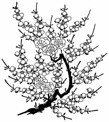 Cherry Blossom Stamps (Cherry Blossom Branch Unmounted Rubber Stamp - 7158 )
