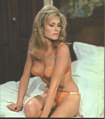 SEXY URSULA ANDRESS BRA AND PANTIES  PHOTO FROM WHAT'S NEW PUSSYCAT?