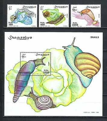 Somalia 2003   Snails  MNH Stamp and Souvenir Sheet Set