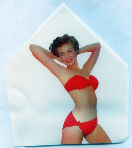 1950s Vintage Lot of 8 Sexy BIKINI Pin Up Girl in Mens Neck Tie Hidden Inserts