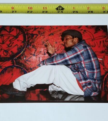 """DEL  5x7 ORIGINAL PHOTO HIEROGLYPHICS Rap flyer poster lp 12"""" cd"""