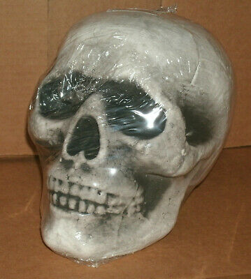 Styrofoam Head Halloween Decorations (Life Size Human Skull StyroFoam Model Prop Dead Bone Head Halloween Decoration)