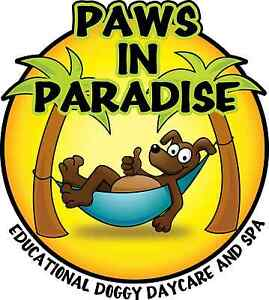 Dog Training Workshop and Seminar- Creating a Calm Dog
