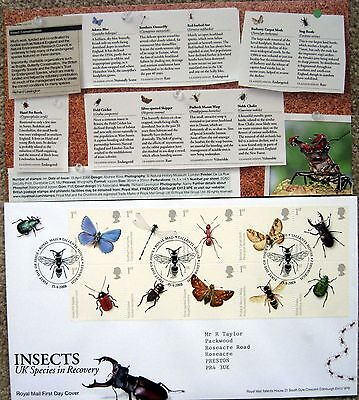 ROYAL MAIL FIRST DAY COVER 'Insects' UK Species in Recovery