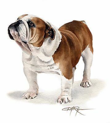 BULLDOG watercolor painting 8 x 10 ART print signed by artist DJR