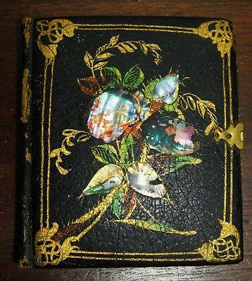 Vtg Plate Daguerreotype Photo Case Colored Mother of Pearl Black Lacquer Back