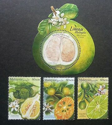 Malaysia Citrus 2018 Fruits Pomelo (ms + stamp) MNH *odd *gloss varnish *unusual