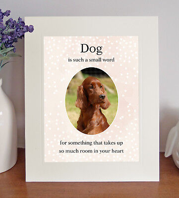 """Irish Setter """"Dog is such a small word"""" 8x10 Picture/Print, Sentimental Gift"""