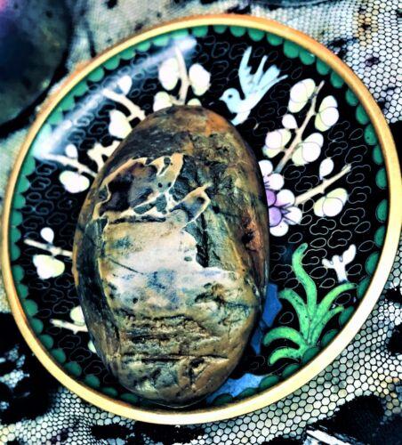 💚 Spirited Hand Polished Ocean Fire Earth Air Energy Sea Jasper Warrior Stone
