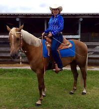 Western Saddle & saddle cloth Landsborough Caloundra Area Preview