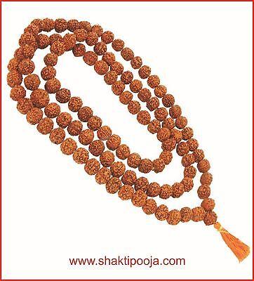 Genuine Rudraksh Rudraksha Japa Mala Holy Hindu 108+1 beads Rosary 10mm size