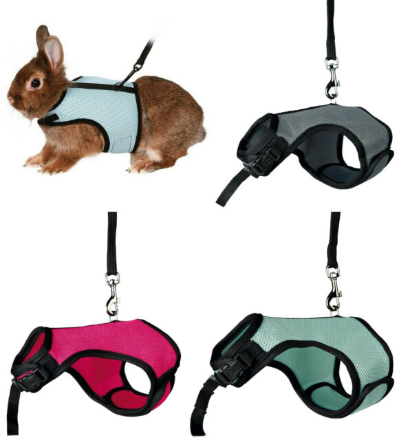 Dwarf Rabbit Full Body Soft Padded Harness & Elasticated Leash Various Colours