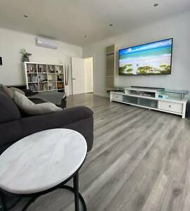 House Share Ascot Vale Female Roommate Wanted Pet Friendly