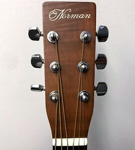 Norman B20 Acoustic Electric - Hardcase Included
