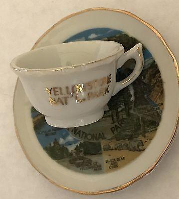 Vintage Souvenir Mini Teacup Saucer Set Yellowstone National Park Porcelain