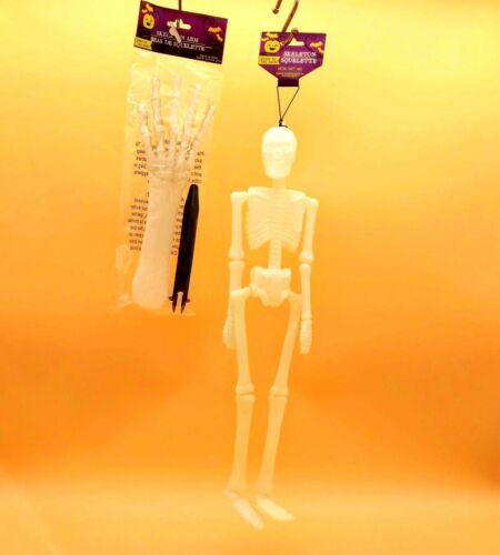 "Halloween Glow-in-the-Dark Hanging Skeleton 18"" and Skeleton Arm 11"""