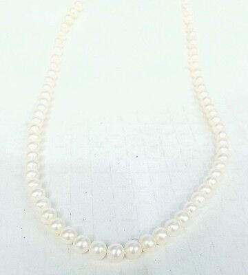 """* UNSTRUNG 16"""" STRAND OF 6 - 6 1/2MM FRESHWATER PEARLS W/ NO LOCKS"""