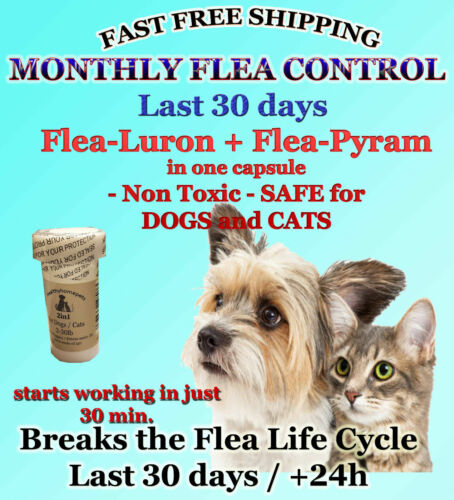 2in1 Fea Killer Control for Dogs /Cats 2-30lb 6 month prevention starts in 30min