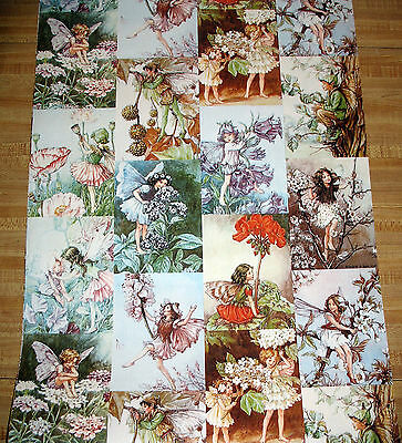 Rare Storeys UK Vinyl Wallpaper Cicely Mary Barker Fairies 11 yds Decor Crafts