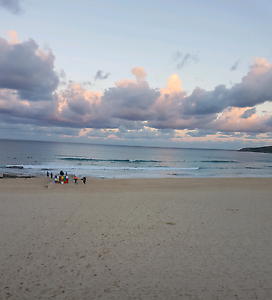 Maroubra beach room available Maroubra Eastern Suburbs Preview