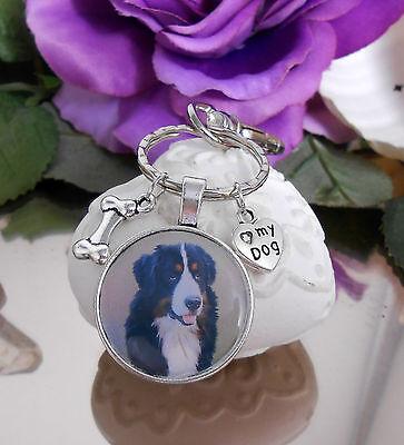 Schlüsselanhänger Hund Knochen Pfoten mit Ring und Karabiner