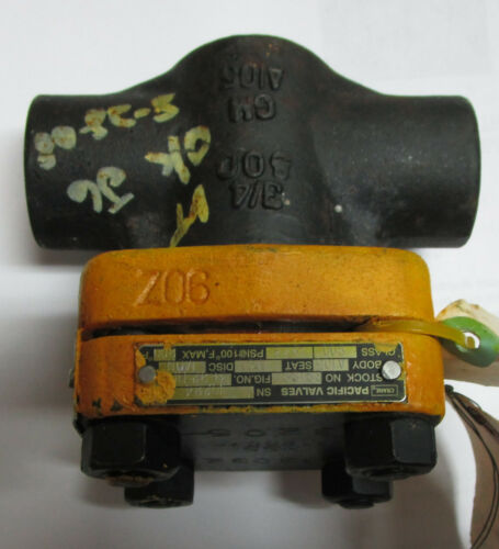 """Pacific Valves Check Valve 3/4"""" Inch Class 800 GM A105 Used? New?"""