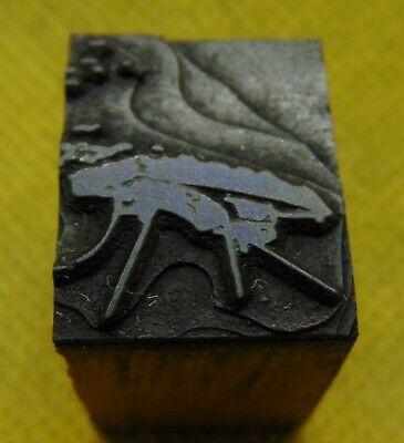 Vintage Printing Letterpress Printers Block Bug Insect