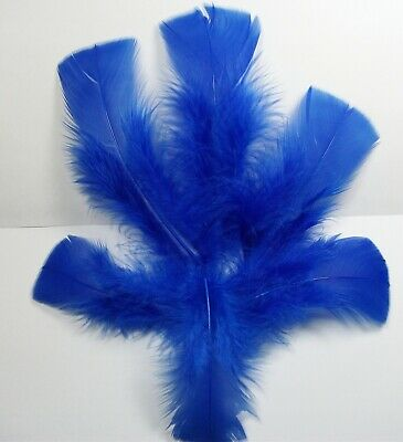 TURKEY T BASE FEATHERS {APPROX 80 - 100 SELECT  } COLOR :BLUE,  U.S.A. SELLER](Turkey Feather)