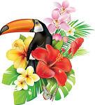 Tropicalware