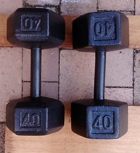 40lb (18.3kg) steel hex Dumbbells Dumbells Chatswood Willoughby Area Preview