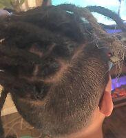 Dreadlocks Dreads Locks & Natural Hair Care by Lovely Loxx