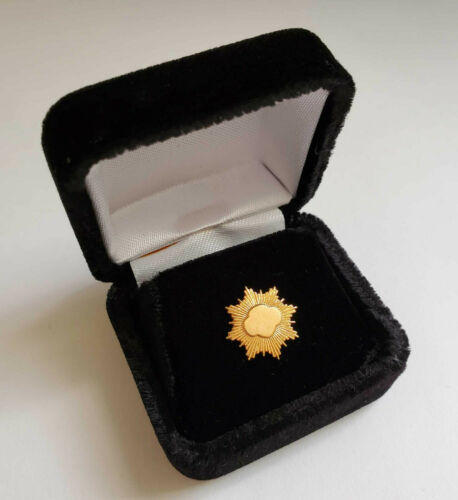 FROSTED Girl Scout 10k MINI GOLD AWARD PARENT PIN Senior Highest Award NEW Gift